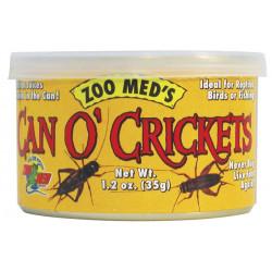 Can O' Crickets / Grillos enlatados